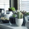 Fabriquer un support pour ses plantes d'intérieur et d'extérieur