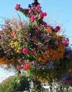 Suspensions fleurs d'été